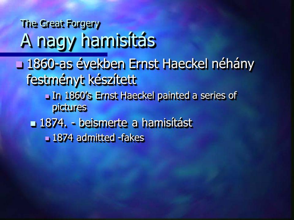The Great Forgery A nagy hamisítás 1860-as években Ernst Haeckel néhány festményt készített 1860-as években Ernst Haeckel néhány festményt készített In 1860's Ernst Haeckel painted a series of pictures In 1860's Ernst Haeckel painted a series of pictures 1874.