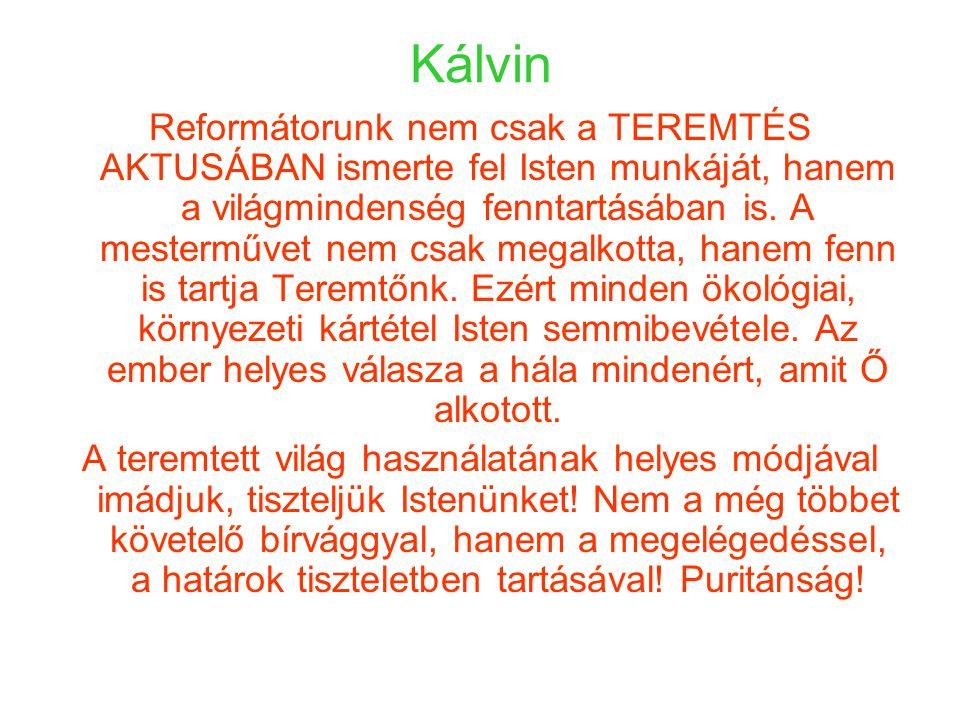 Kálvin Reformátorunk nem csak a TEREMTÉS AKTUSÁBAN ismerte fel Isten munkáját, hanem a világmindenség fenntartásában is.