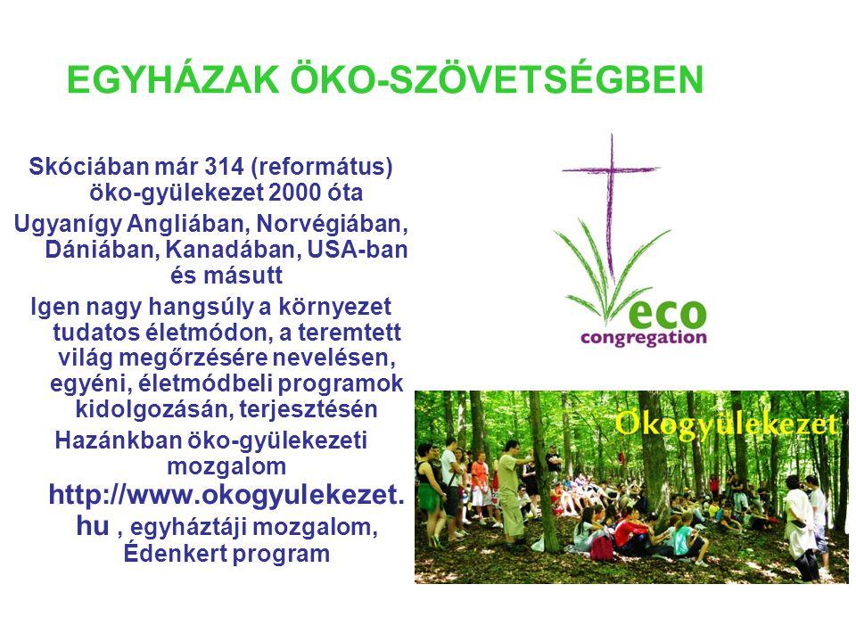 EGYHÁZAK ÖKO-SZÖVETSÉGBEN Skóciában már 314 (református) öko-gyülekezet 2000 óta Ugyanígy Angliában, Norvégiában, Dániában, Kanadában, USA-ban és másutt Igen nagy hangsúly a környezet tudatos életmódon, a teremtett világ megőrzésére nevelésen, egyéni, életmódbeli programok kidolgozásán, terjesztésén Hazánkban öko-gyülekezeti mozgalom http://www.okogyulekezet.