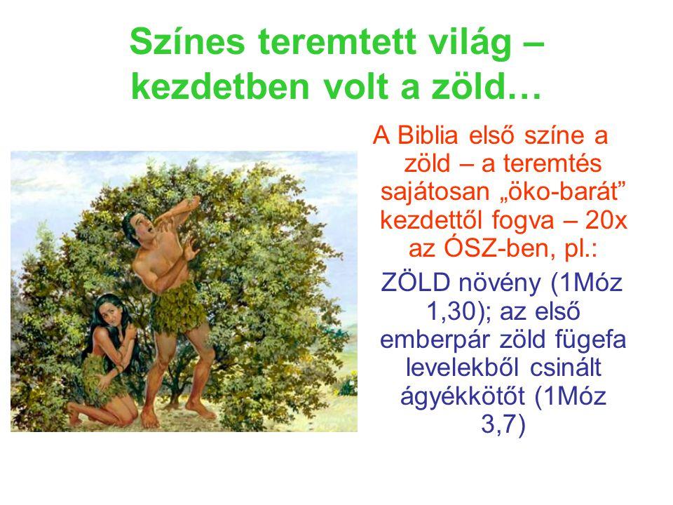 """Színes teremtett világ – kezdetben volt a zöld… A Biblia első színe a zöld – a teremtés sajátosan """"öko-barát kezdettől fogva – 20x az ÓSZ-ben, pl.: ZÖLD növény (1Móz 1,30); az első emberpár zöld fügefa levelekből csinált ágyékkötőt (1Móz 3,7)"""