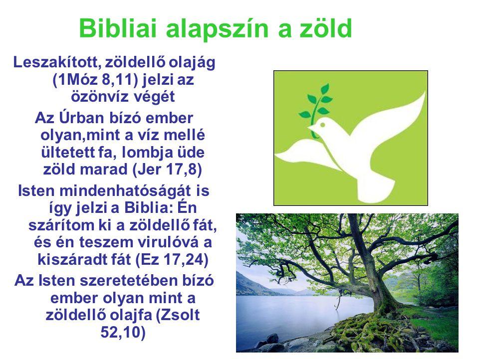 Bibliai alapszín a zöld Leszakított, zöldellő olajág (1Móz 8,11) jelzi az özönvíz végét Az Úrban bízó ember olyan,mint a víz mellé ültetett fa, lombja üde zöld marad (Jer 17,8) Isten mindenhatóságát is így jelzi a Biblia: Én szárítom ki a zöldellő fát, és én teszem virulóvá a kiszáradt fát (Ez 17,24) Az Isten szeretetében bízó ember olyan mint a zöldellő olajfa (Zsolt 52,10)