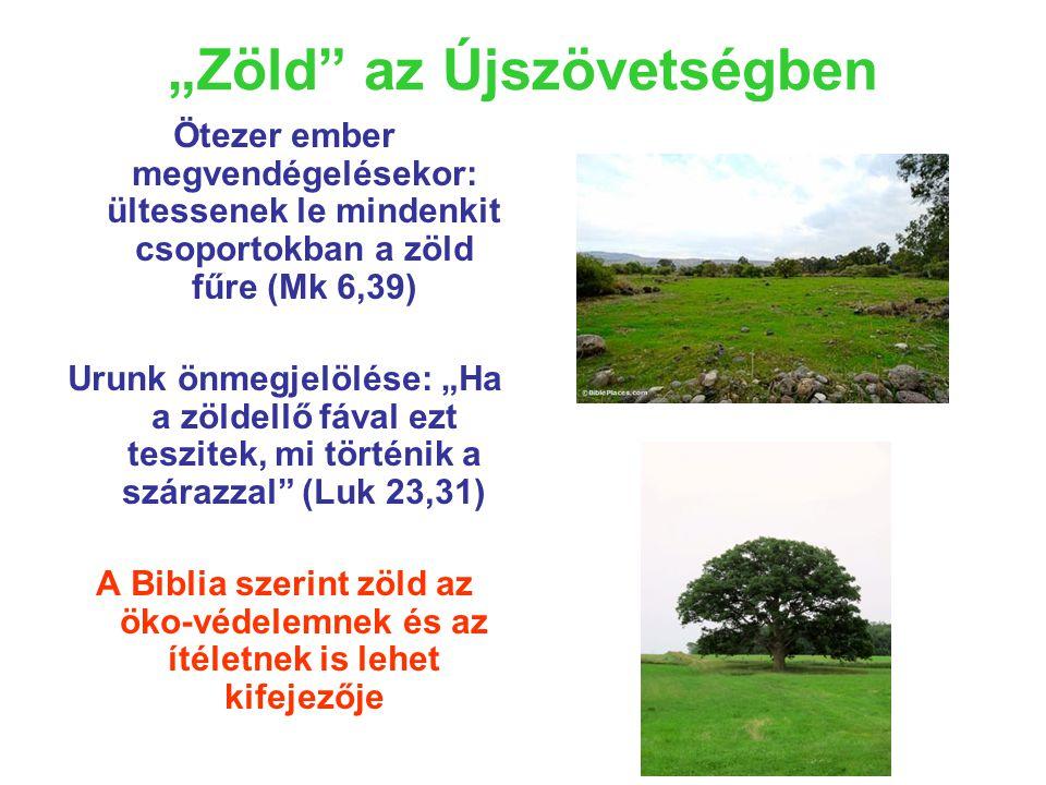 """""""Zöld az Újszövetségben Ötezer ember megvendégelésekor: ültessenek le mindenkit csoportokban a zöld fűre (Mk 6,39) Urunk önmegjelölése: """"Ha a zöldellő fával ezt teszitek, mi történik a szárazzal (Luk 23,31) A Biblia szerint zöld az öko-védelemnek és az ítéletnek is lehet kifejezője"""