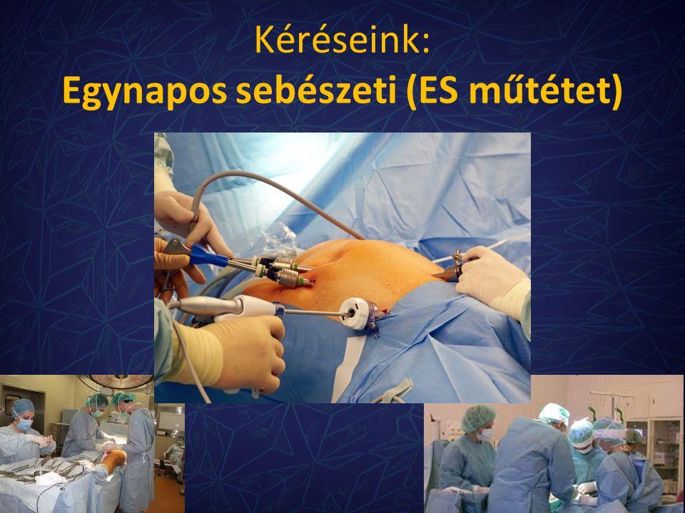 Kéréseink: Egynapos sebészeti (ES műtétet)