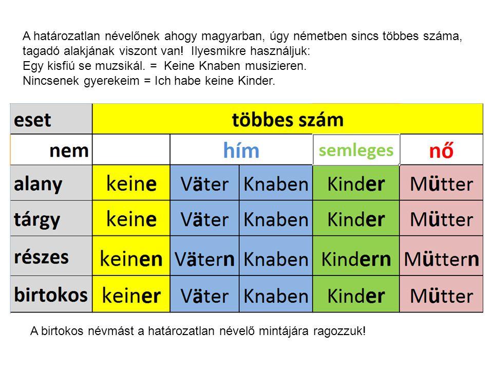 A határozatlan névelőnek ahogy magyarban, úgy németben sincs többes száma, tagadó alakjának viszont van.