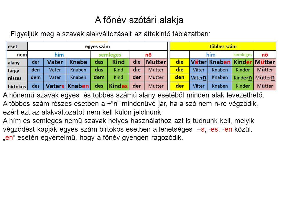 A főnév szótári alakja A nőnemű szavak egyes és többes számú alany esetéből minden alak levezethető.