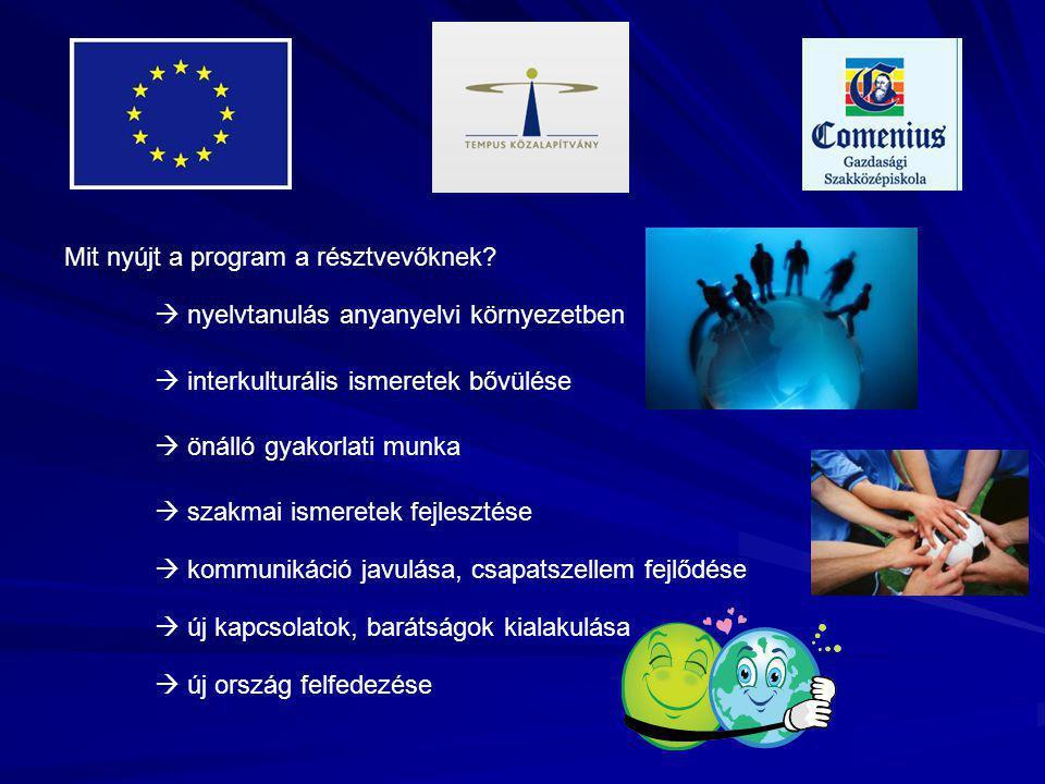 Mit nyújt a program a résztvevőknek.