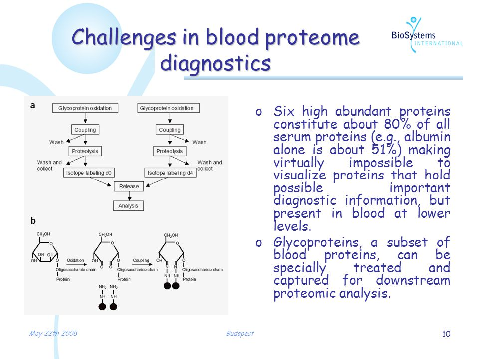 May 22th 2008Budapest 10 Challenges in blood proteome diagnostics oSix high abundant proteins constitute about 80% of all serum proteins (e.g., albumin alone is about 51%) making virtually impossible to visualize proteins that hold possible important diagnostic information, but present in blood at lower levels.