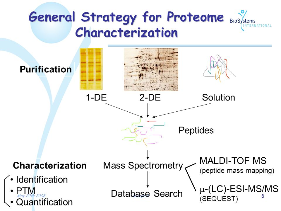 May 22th 2008Budapest 8 General Strategy for Proteome Characterization Purification Peptides Mass Spectrometry Database Search 1-DE2-DESolution Characterization MALDI-TOF MS (peptide mass mapping)  -(LC)-ESI-MS/MS (SEQUEST) Identification PTM Quantification