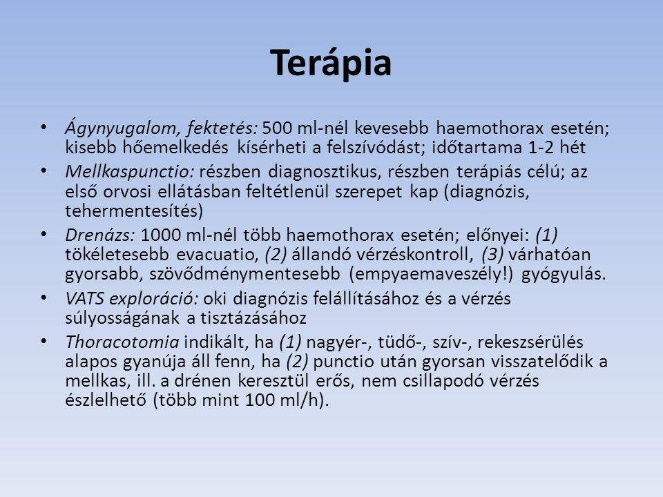 Terápia Ágynyugalom, fektetés: 500 ml-nél kevesebb haemothorax esetén; kisebb hőemelkedés kísérheti a felszívódást; időtartama 1-2 hét Mellkaspunctio: