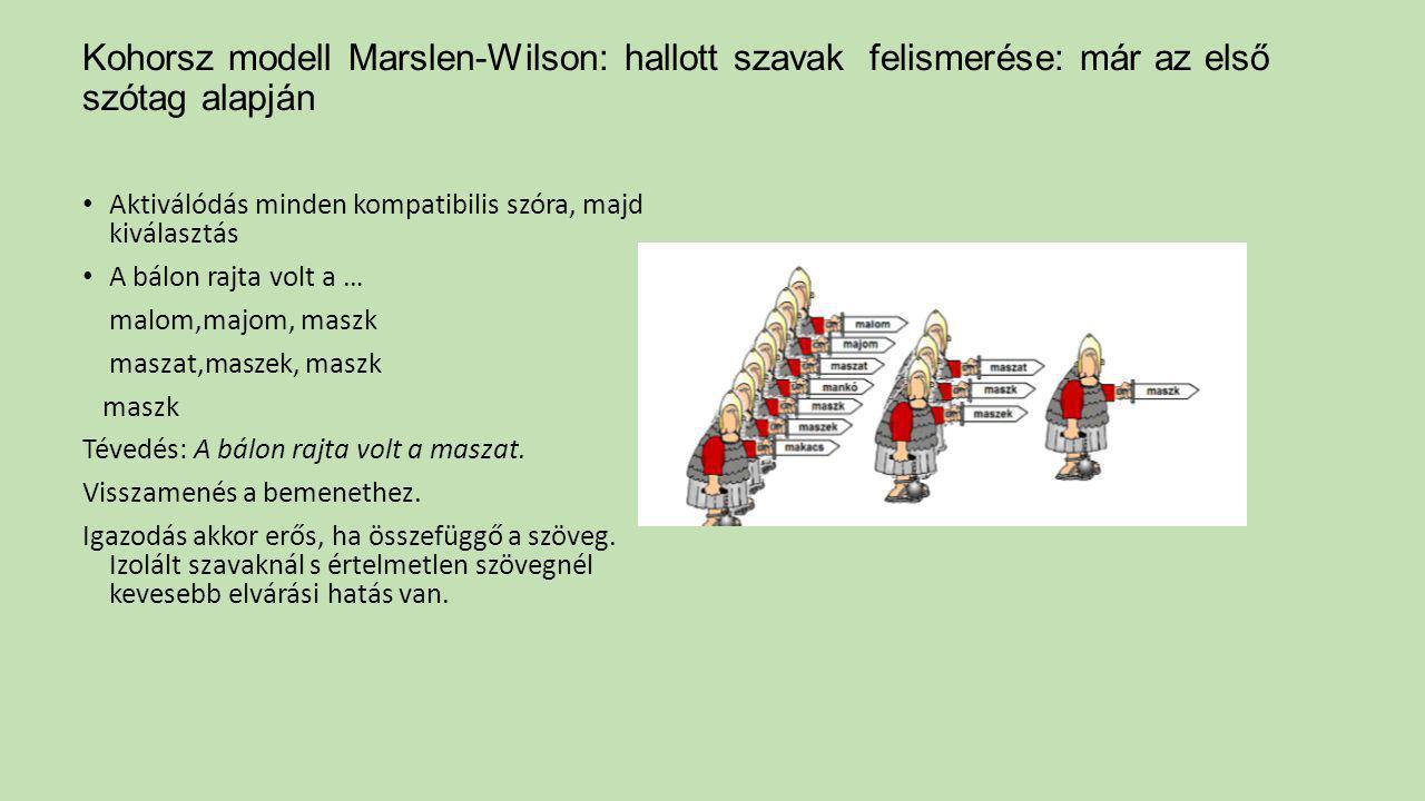 Kohorsz modell Marslen-Wilson: hallott szavak felismerése: már az első szótag alapján Aktiválódás minden kompatibilis szóra, majd kiválasztás A bálon