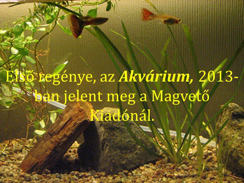 A szerzőről: Első regénye, az Akvárium, 2013- ban jelent meg a Magvető Kiadónál.