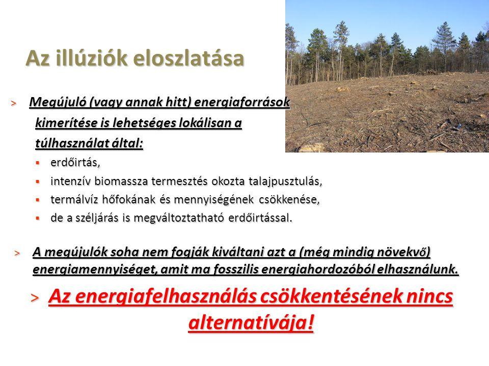 Az illúziók eloszlatása > Megújuló (vagy annak hitt) energiaforrások kimerítése is lehetséges lokálisan a túlhasználat által:  erdőirtás,  intenzív