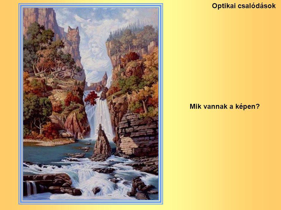 Mik vannak a képen? Optikai csalódások