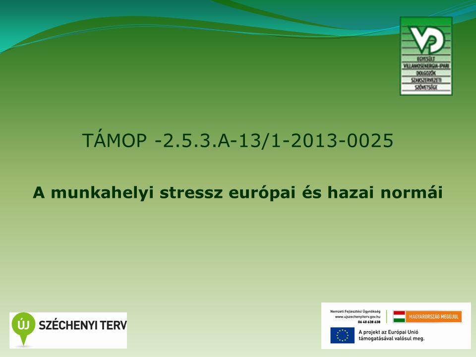TÁMOP -2.5.3.A-13/1-2013-0025 A munkahelyi stressz európai és hazai normái 1