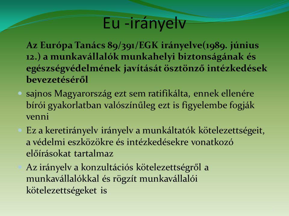 Eu -irányelv Az Európa Tanács 89/391/EGK irányelve(1989. június 12.) a munkavállalók munkahelyi biztonságának és egészségvédelmének javítását ösztönző