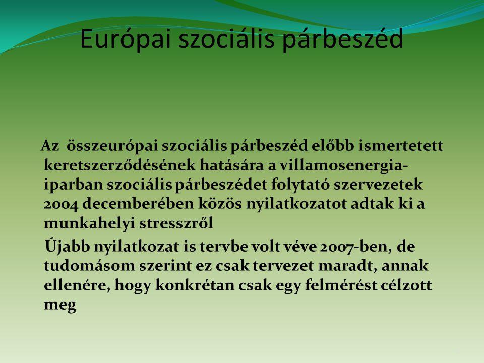 Európai szociális párbeszéd Az összeurópai szociális párbeszéd előbb ismertetett keretszerződésének hatására a villamosenergia- iparban szociális párb
