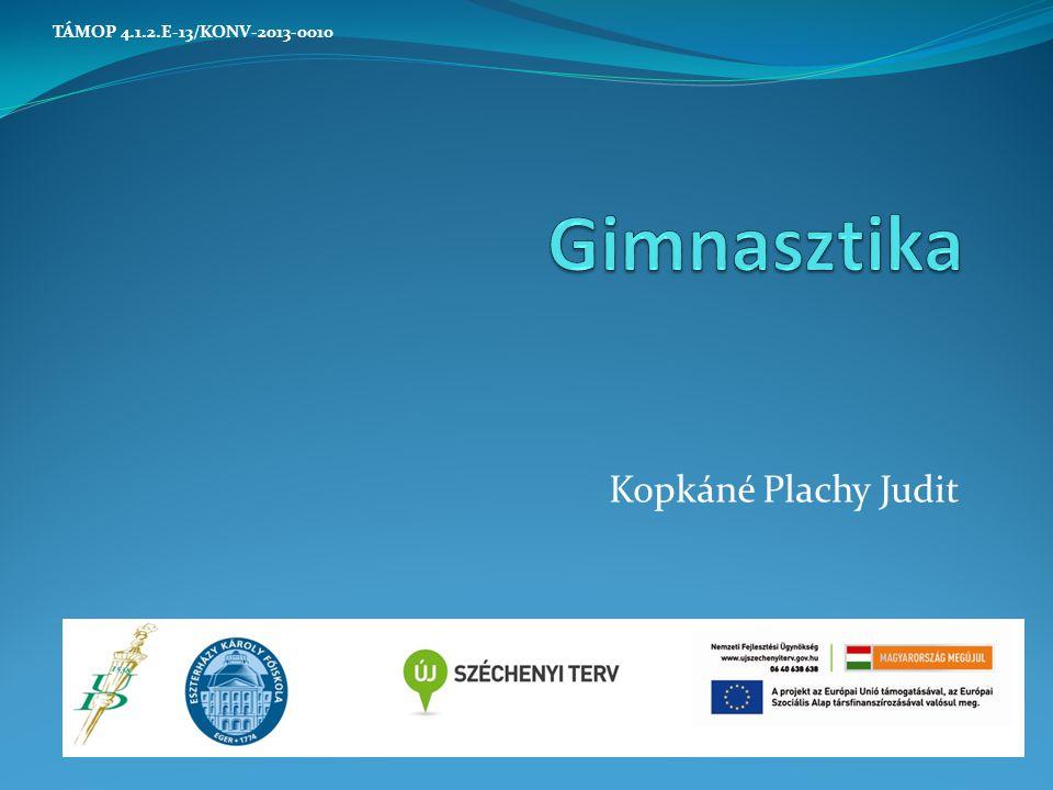 Kopkáné Plachy Judit TÁMOP 4.1.2.E-13/KONV-2013-0010