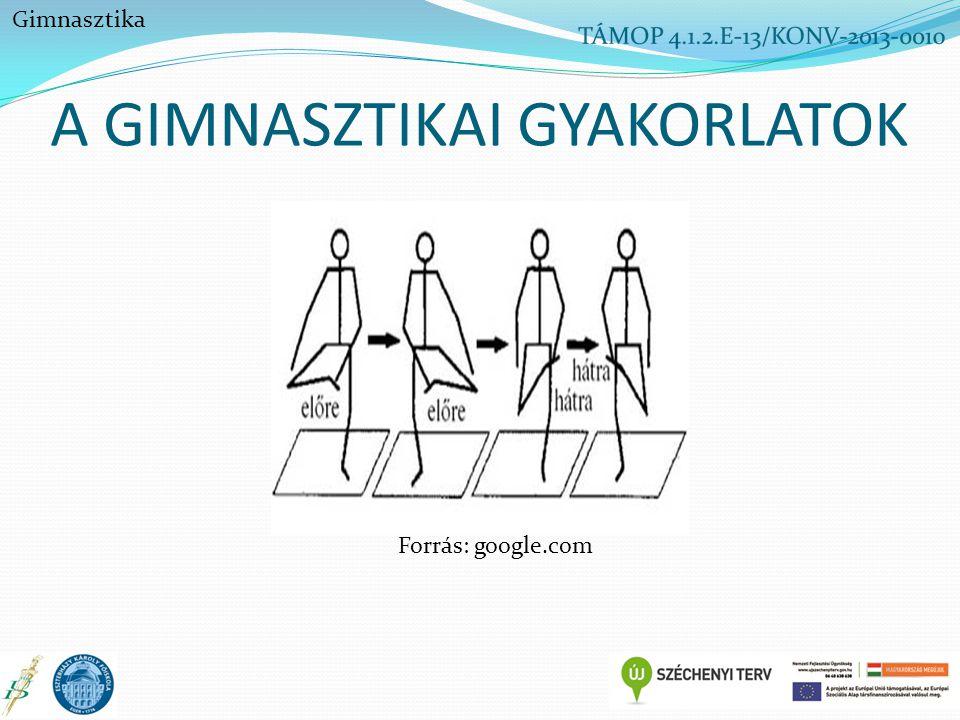 A GIMNASZTIKAI GYAKORLATOK Gimnasztika Forrás: google.com