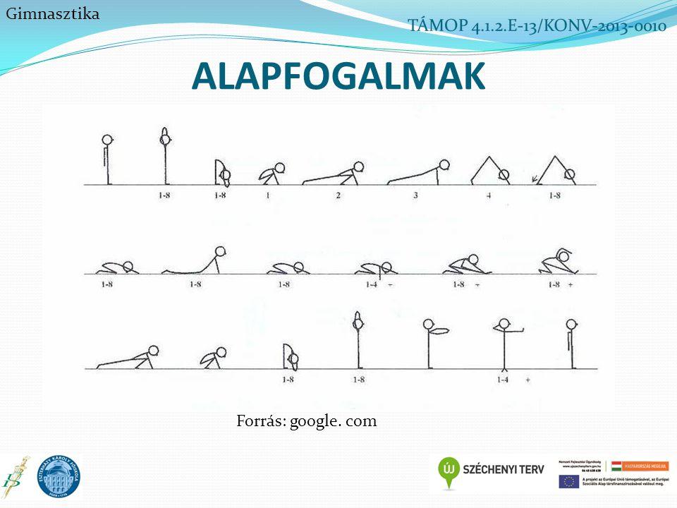 ALAPFOGALMAK Gimnasztika Forrás: google. com
