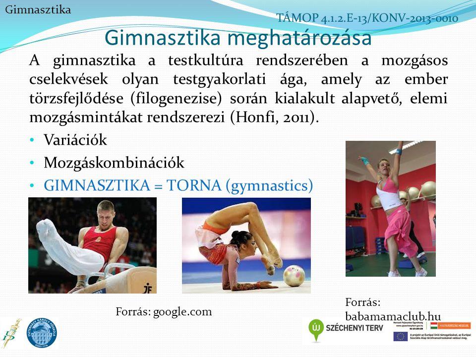 Gimnasztika meghatározása A gimnasztika a testkultúra rendszerében a mozgásos cselekvések olyan testgyakorlati ága, amely az ember törzsfejlődése (fil