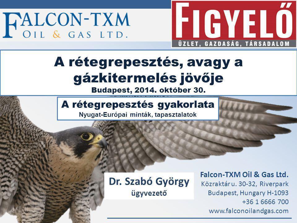 Falcon-TXM Oil & Gas Ltd.
