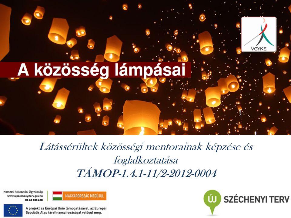 Látássérültek közösségi mentorainak képzése és foglalkoztatása TÁMOP-1.4.1-11/2-2012-0004