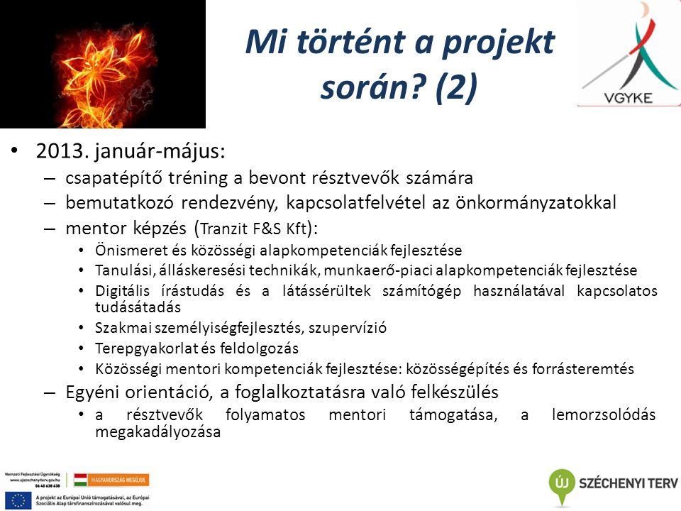 Mi történt a projekt során. (2) 2013.