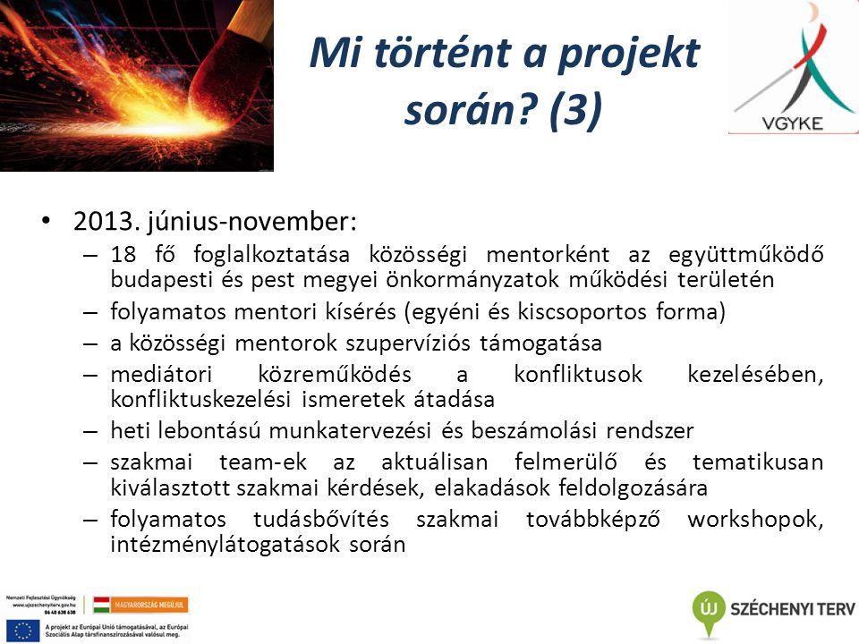 Mi történt a projekt során. (3) 2013.