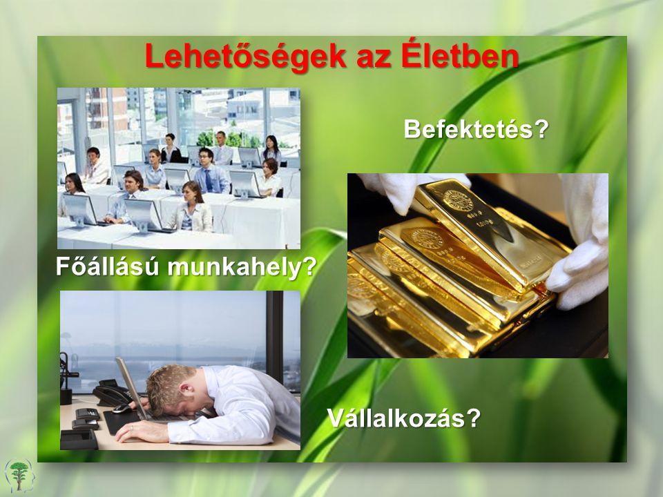 Főállású munkahely? Vállalkozás? Befektetés? Lehetőségek az Életben