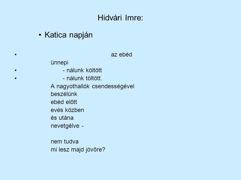 Hidvári Imre: Katica napján az ebéd ünnepi - nálunk költött - nálunk töltött. A nagyothallók csendességével beszélünk ebéd előtt evés közben és utána