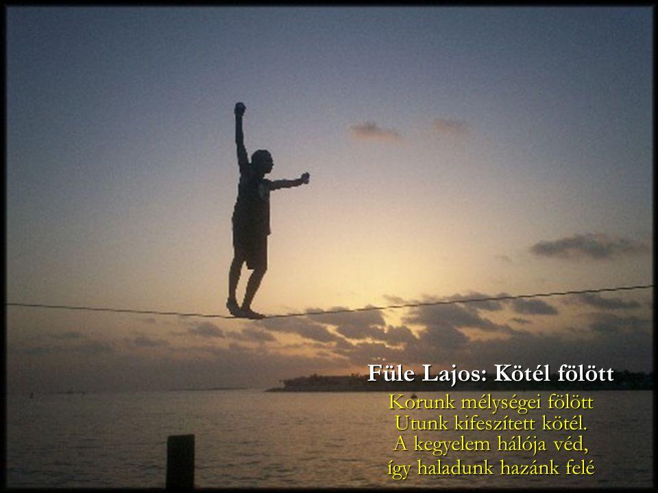 Füle Lajos: Kötél fölött Korunk mélységei fölött Utunk kifeszített kötél. A kegyelem hálója véd, így haladunk hazánk felé