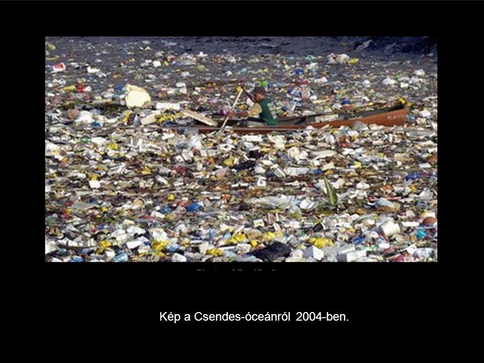 Kép a Csendes-óceánról 2004-ben.