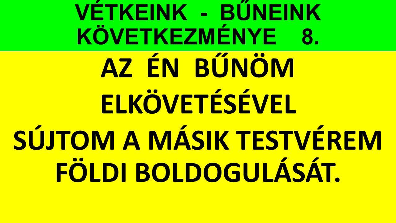 VÉTKEINK - BŰNEINK KÖVETKEZMÉNYE 8. AZ ÉN BŰNÖM ELKÖVETÉSÉVEL SÚJTOM A MÁSIK TESTVÉREM FÖLDI BOLDOGULÁSÁT.