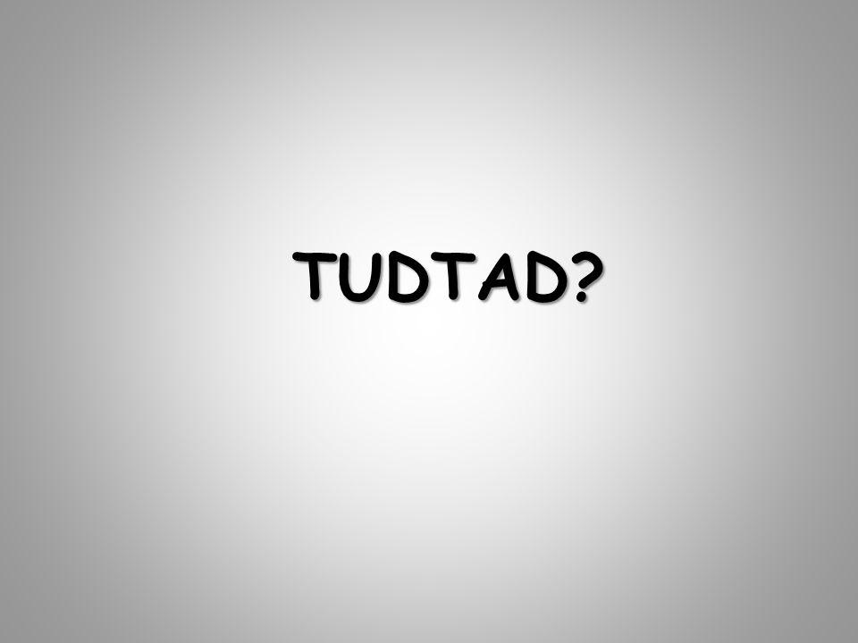 TUDTAD?