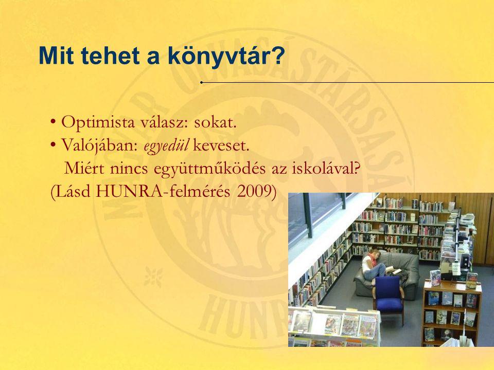 Mit tehet a könyvtár. Optimista válasz: sokat. Valójában: egyedül keveset.
