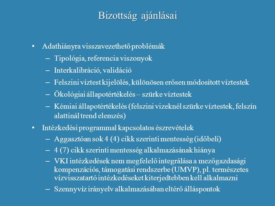 Bizottság ajánlásai Adathiányra visszavezethető problémák – Tipológia, referencia viszonyok – Interkalibráció, validáció – Felszini víztest kijelölés,