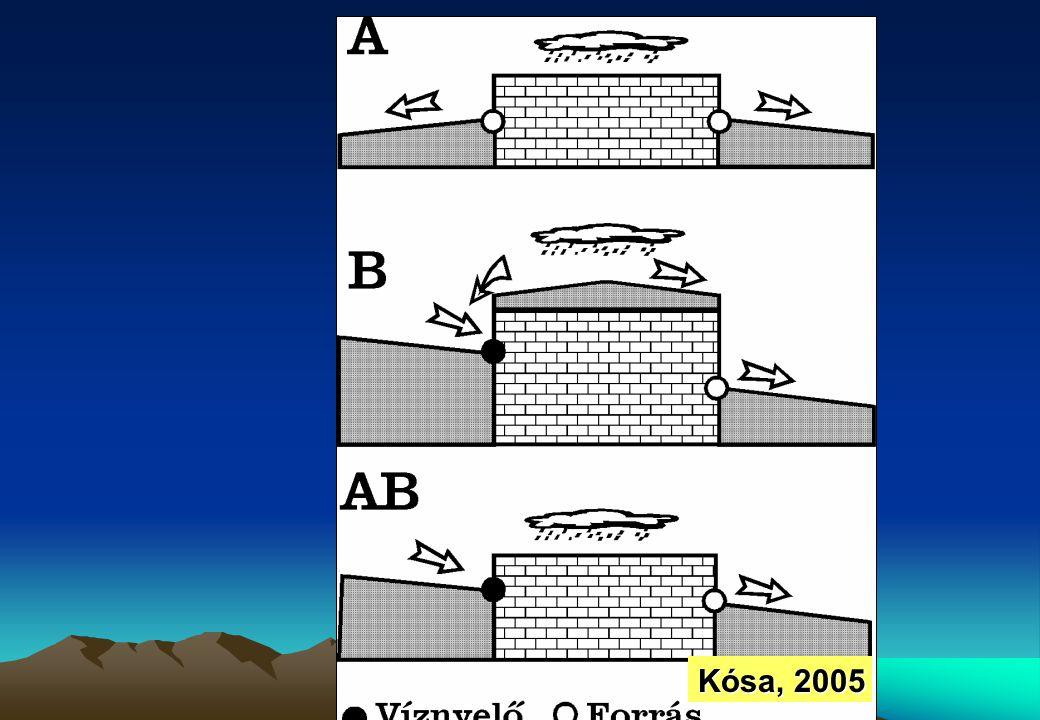 Kósa, 2005