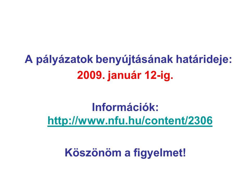 A pályázatok benyújtásának határideje: 2009.január 12-ig.