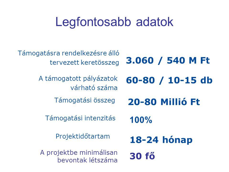 Előnyt jelentő tevékenységek A pályázó a projektet a 311/2007.