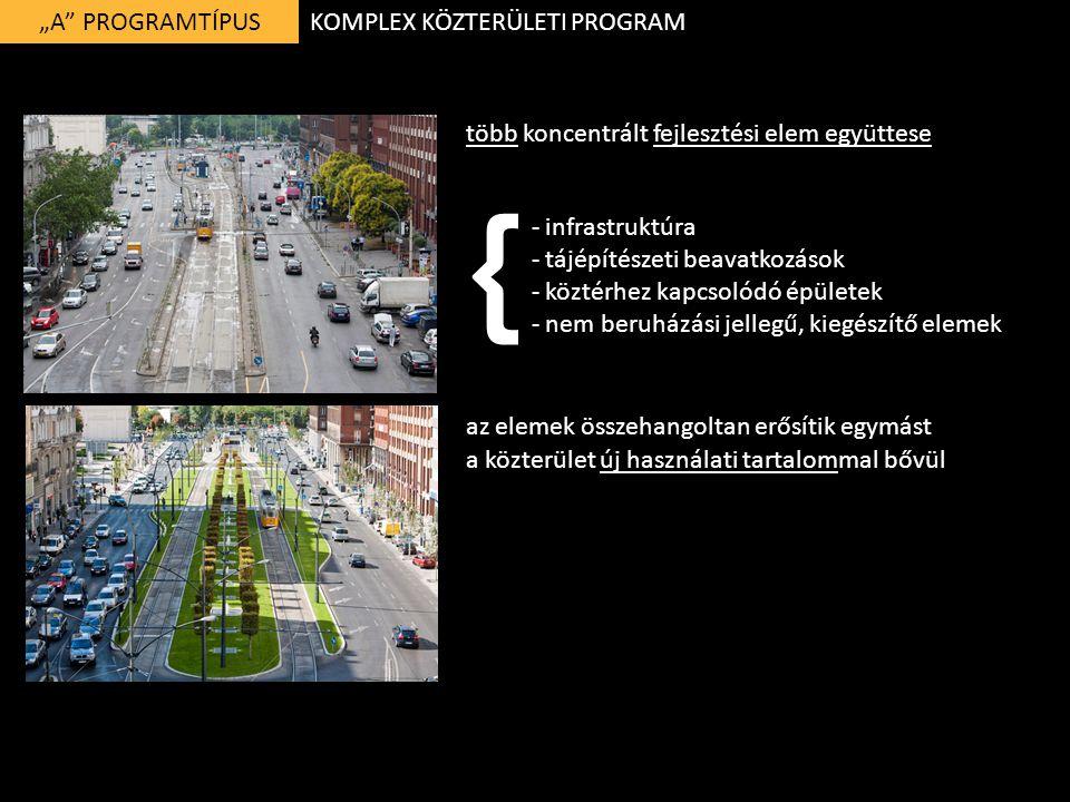 """""""A"""" PROGRAMTÍPUS több koncentrált fejlesztési elem együttese - infrastruktúra - tájépítészeti beavatkozások - köztérhez kapcsolódó épületek - nem beru"""