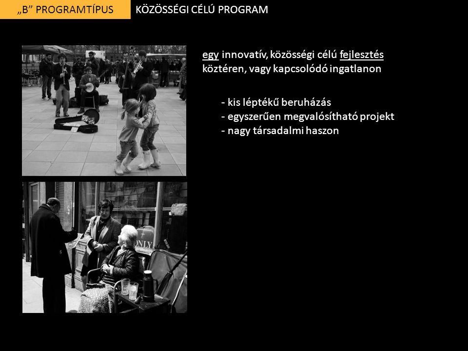 """""""B PROGRAMTÍPUS egy innovatív, közösségi célú fejlesztés köztéren, vagy kapcsolódó ingatlanon KÖZÖSSÉGI CÉLÚ PROGRAM - kis léptékű beruházás - egyszerűen megvalósítható projekt - nagy társadalmi haszon"""