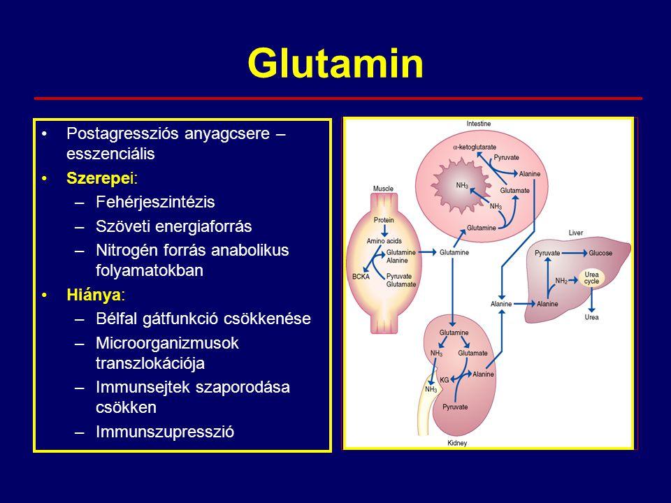 Glutamin Postagressziós anyagcsere – esszenciális Szerepei: –Fehérjeszintézis –Szöveti energiaforrás –Nitrogén forrás anabolikus folyamatokban Hiánya: