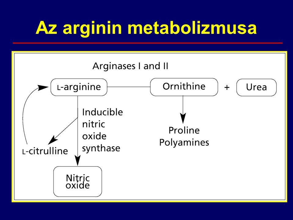 Az arginin metabolizmusa