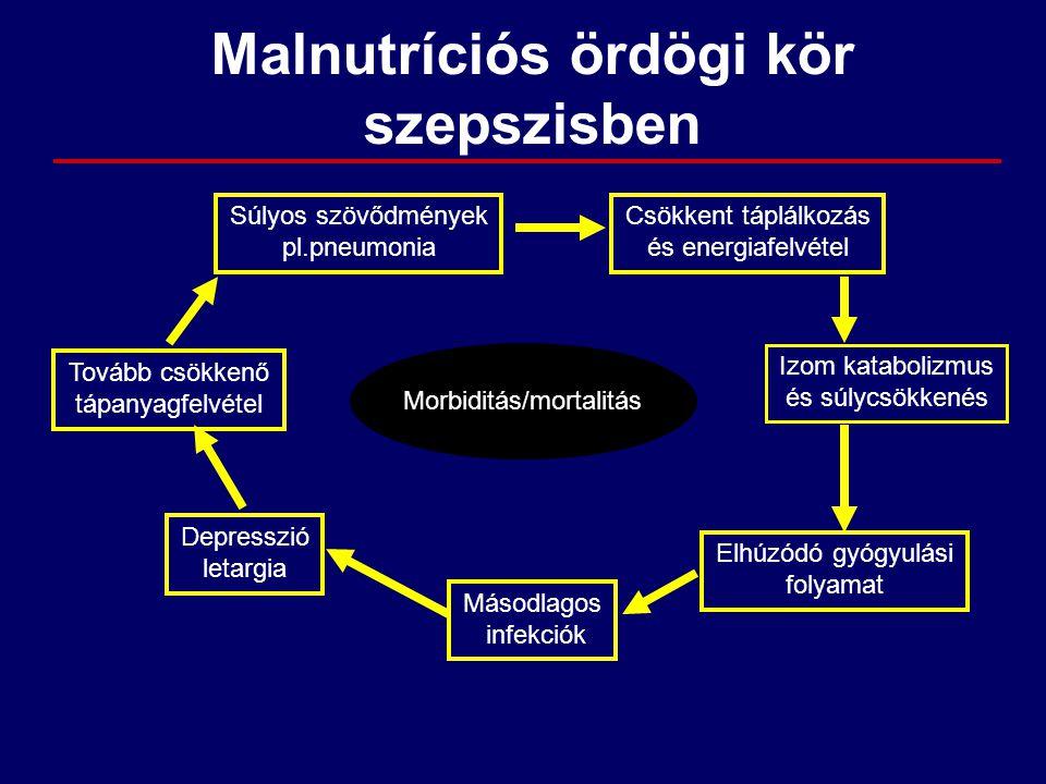 Morbiditás/mortalitás Súlyos szövődmények pl.pneumonia Csökkent táplálkozás és energiafelvétel Izom katabolizmus és súlycsökkenés Elhúzódó gyógyulási
