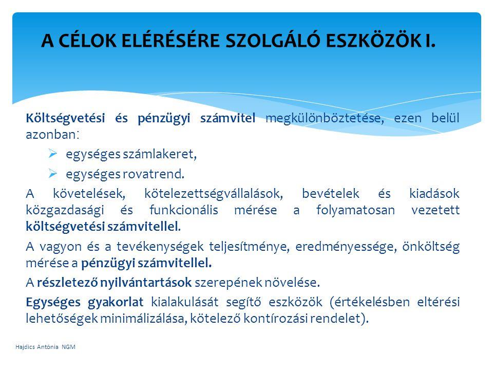 A CÉLOK ELÉRÉSÉRE SZOLGÁLÓ ESZKÖZÖK II. Hajdics Antónia NGM
