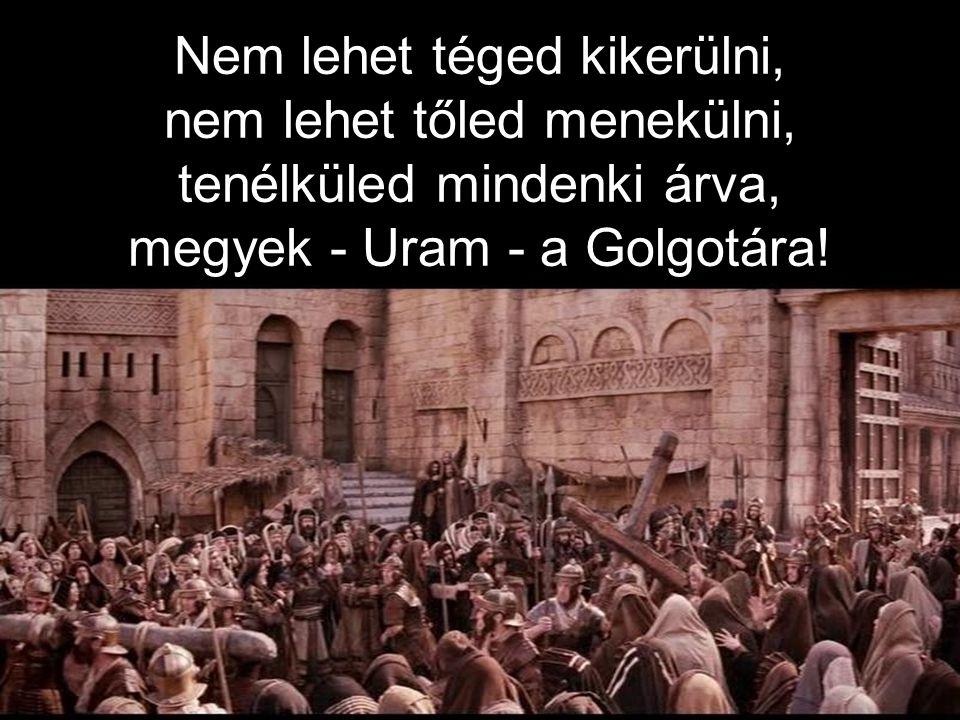 Nem lehet téged kikerülni, nem lehet tőled menekülni, tenélküled mindenki árva, megyek - Uram - a Golgotára!