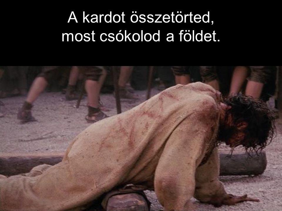A kardot összetörted, most csókolod a földet.