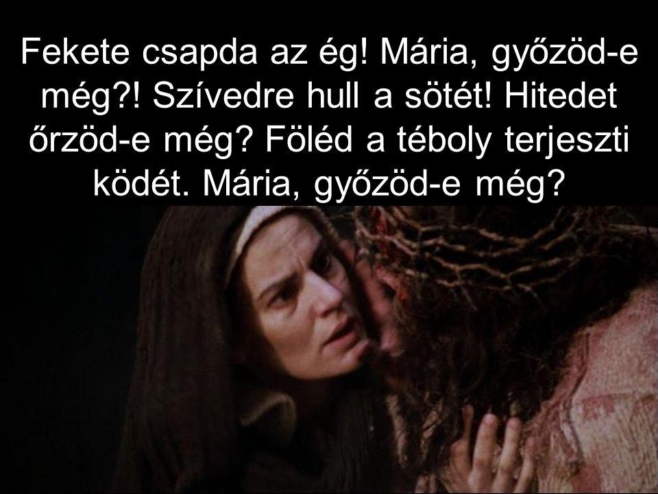 Fekete csapda az ég.Mária, győzöd-e még?. Szívedre hull a sötét.