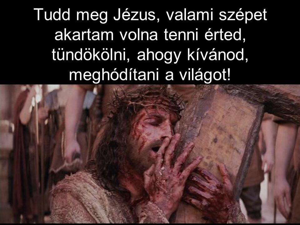 Ő az az ember, kire hallgattak félelemmel, az Isten Lelke pihent rajta, viharnak parancsolt az ajka.