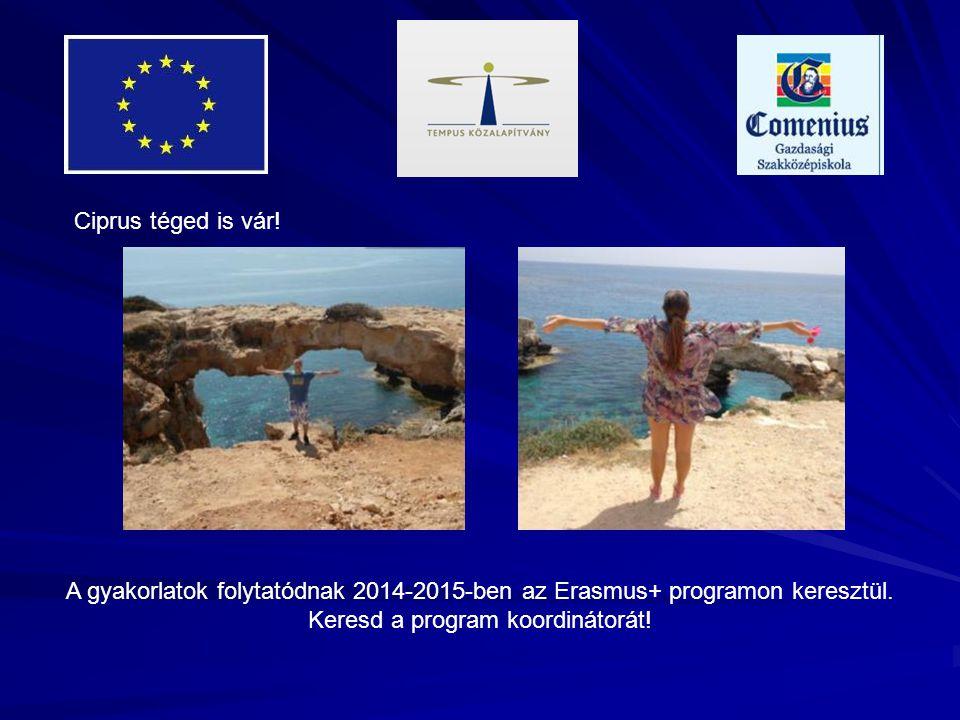 Ciprus téged is vár! A gyakorlatok folytatódnak 2014-2015-ben az Erasmus+ programon keresztül. Keresd a program koordinátorát!